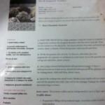 paulding & company desserts camp recipe