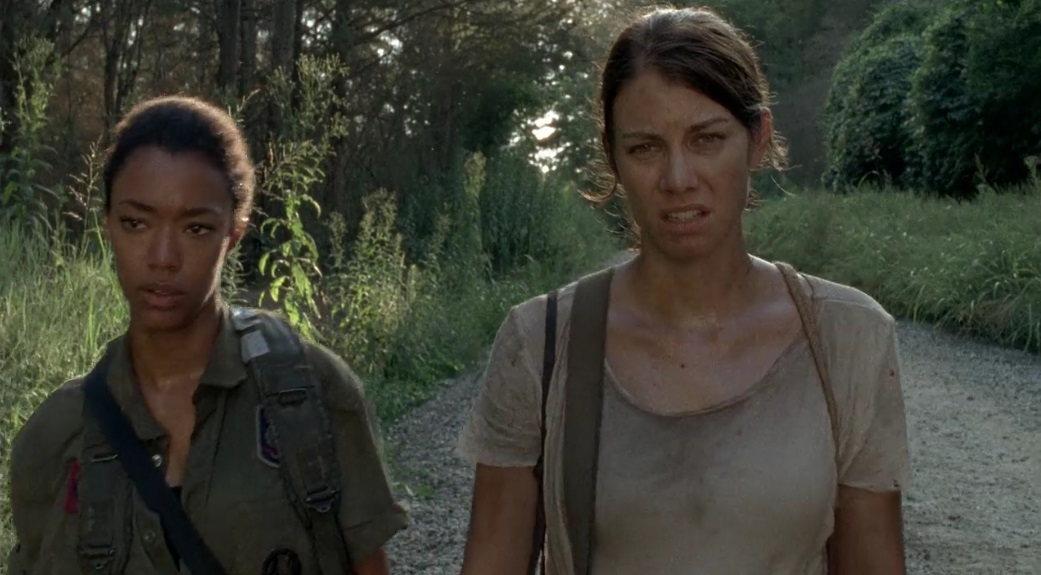 netflix maggie and sashsa walking dead